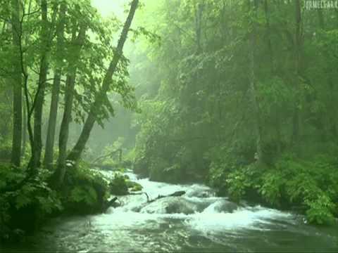 Cao Sơn Lưu Thủy (高山流水) - Điển tích Bá Nha & Chung Tử Kì