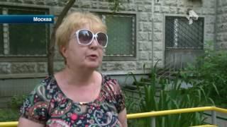 В столице женщина обвиняет сотрудников ветеринарной клиники в том, что они убили двух ее кошек(Официальный сайт: http://ren.tv/ Сообщество в Facebook: https://www.facebook.com/rentvchannel Сообщество в VK: https://vk.com/rentvchannel ..., 2016-07-18T09:32:40.000Z)