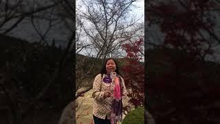 Đánh Giá Khách Hàng Tour Nhật Bản 17/11 - Tugo Travel - 02_22/01/2018