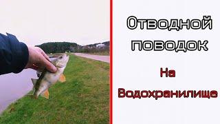 Отводной поводок на водохранилище Цнянка Минск