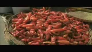 Genda-phool-song | delhi-6-movie.blogspot.com
