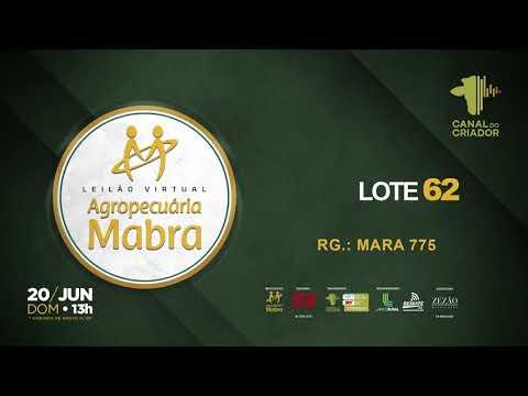LOTE 62  MARA 775