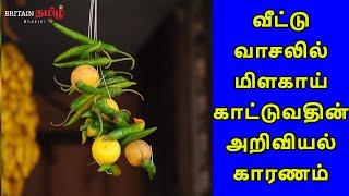 Scientific Reason for hanging Lemon at Home | வீட்டு வாசலில் மிளகாய் காட்டுவதின் அறிவியல் காரணம்…