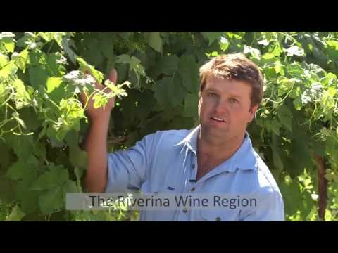 Growers of Great Riverina Wine Australia