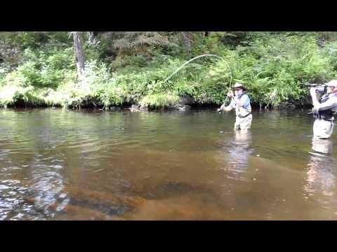 Guided Freshwater Salmon & Trout Fishing, near Naha Bay, Ketchikan, Alaska - 02.MP4