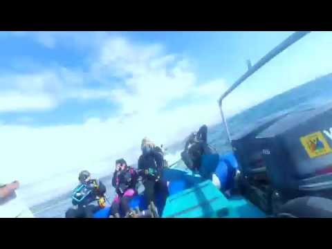 SCUBA dive on T-Barge, Durban, South Africa.