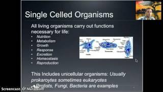 IB 1.1 - Cell Introduction | Dan Rott