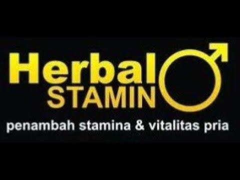 obat herbal kuat alami tradisional pria perkasa youtube youtube