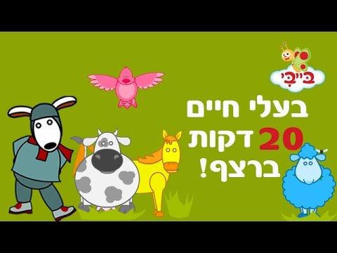 בעלי חיים לילדים ופעוטות - אוצר מילים עם נוני