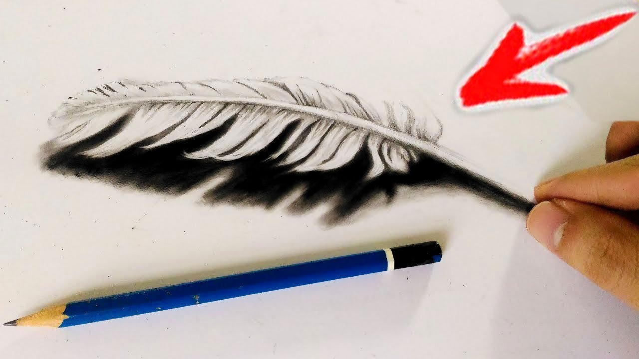 Line Drawing Feather : How to draw d feather cool trick art youtube