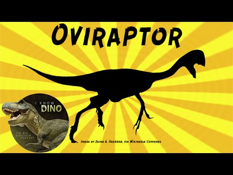 Oviraptor: Dinosaur of the Day
