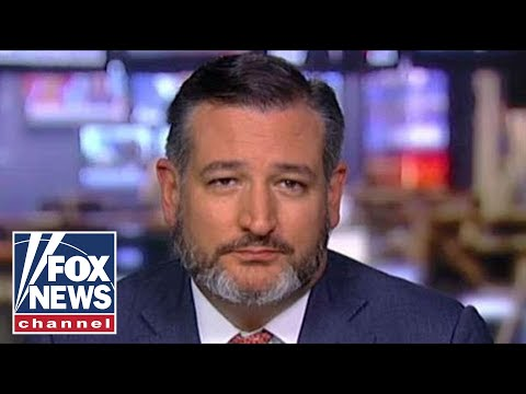 Ted Cruz rips