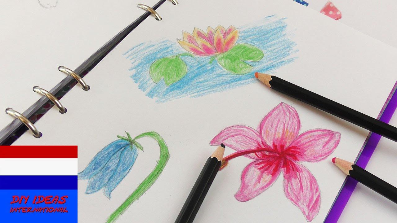 Nieuw drie tekeningen | mooie bloemen voor de lente & zomer | tekenen GE-25
