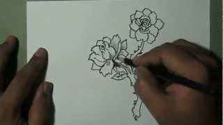 How to draw simple beautiful rose flowers with branch and leaves