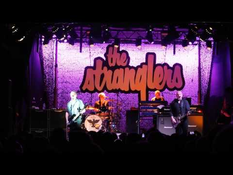 The Stranglers Nice in Nice Aberdeen 2015