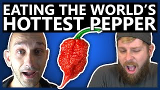 The boys decide to numb their mouths by ingesting the world's hottest pepper, very nice!