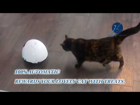 MIA the robot - Plays cats to prevent obesity and reduce anxiety