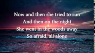 Alan Walker-lily (Lyrics)