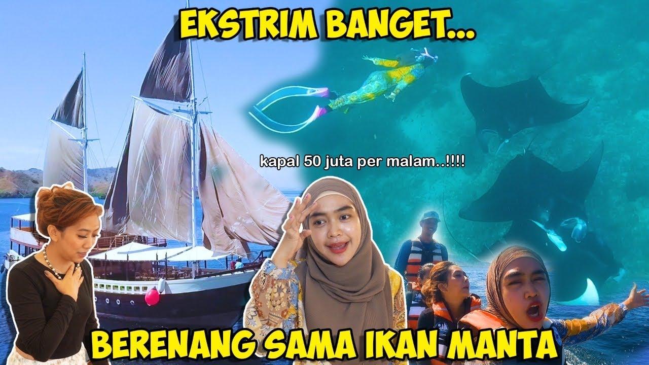 EKSTRIM BANGET BERENANG SAMA IKAN MANTA TERBESAR!! Nginep Di Kapal 50 Juta Permalam!?!!