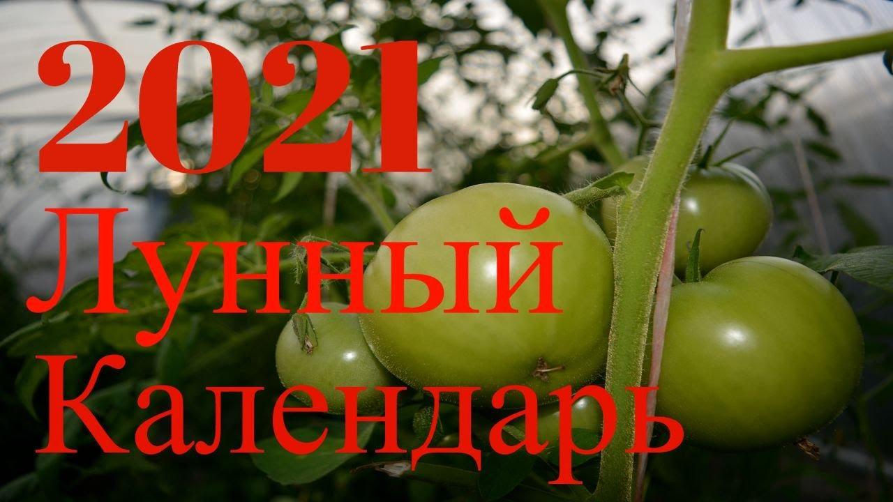 Лунный посевной Календарь для Садовода Огородника на 2021 год Благоприятные дни по Месяцам.