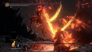 Soul of Cinder No Damage (Champion's Ahses Mod)