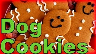Gingerbread Dog Cookies Christmas Treats!  How to make Homemade Dog Treats Recipe