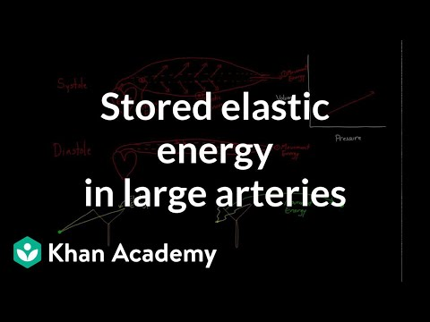 Stored elastic energy in large and middle sized arteries | NCLEX-RN | Khan Academy