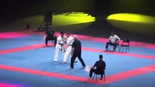 European Kyokushin Karate Open Championship Paris-Bercy 2013
