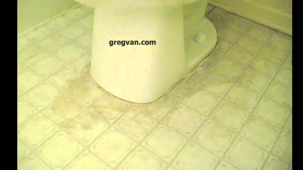 Linoleum Flooring Damage Around Toilet Bathroom Floor Problems - Linoleum floor stain removal
