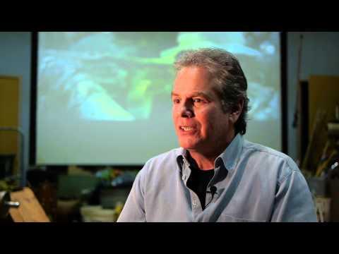 Oscar Nominated Sound Editing  Lone Survivor