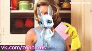 Сколько должна зарабатывать домохозяйка - Zoobe Зайка :)