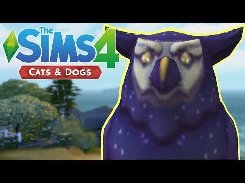 BAY SECRETS - The Sims 4 Cats and Dogs | Episode 12