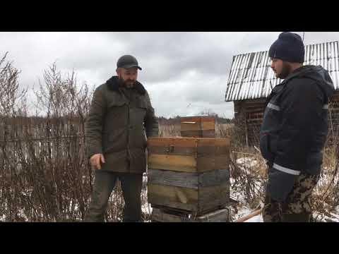 Убираем пчёл в зимовник.