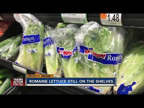 Romaine lettuce still on store shelves in Tampa Bay, hours after CDC recall linked to E. coli