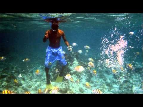 Seven Mile Beach Jamaica Snorkeling