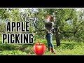 DAY IN THE LIFE OF A TODDLER MOM  APPLE PICKING  Tres Chic Mama