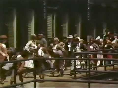 Orphan Train (1979 TV Movie) - Complete, Unedited Movie
