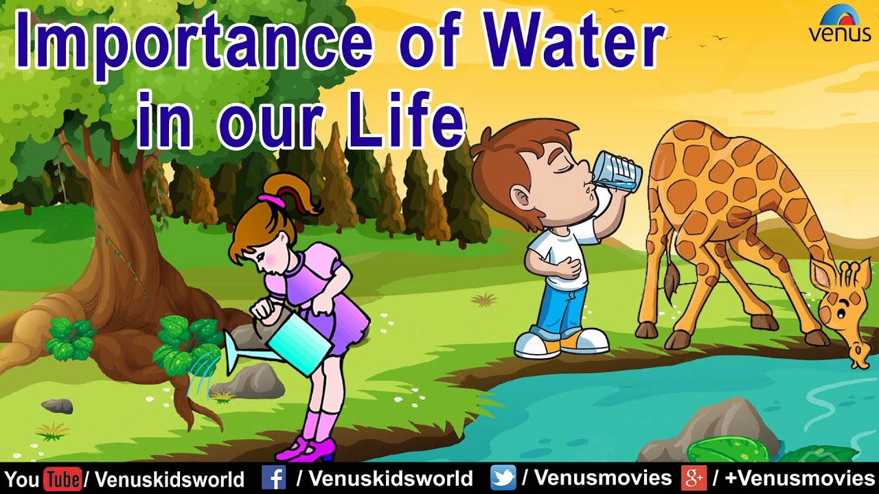 essay importance of water in our life essays on importance  essay importance of water in our life