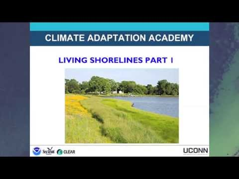 Living Shorelines Workshop Introduction