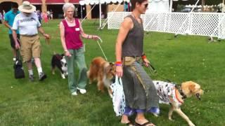 Lavender Festival 2010 - Pet Parade