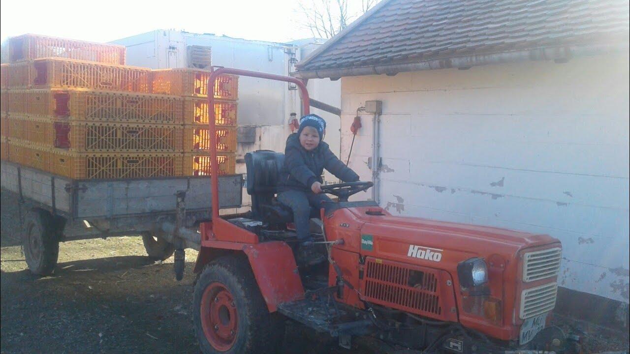 птичий двор в Германии♡ личное фермерское хозяйство♡