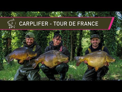 French Carp Fishing - Tour De France