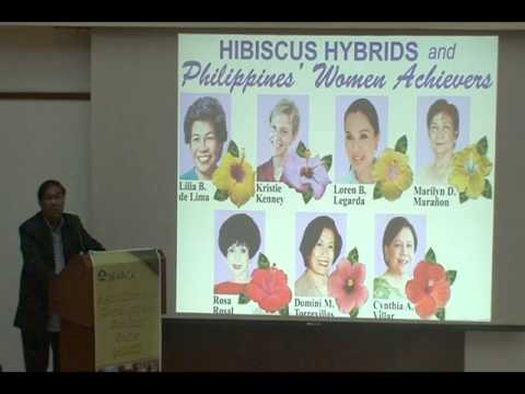Hibiscus Breeding in the Philippines: A Thriving Sector in the Flower Industry