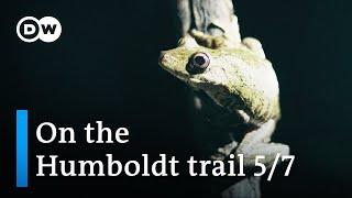 Humboldt discovers biodiversity in the Orinoco basin — Part 5 | DW Documentary