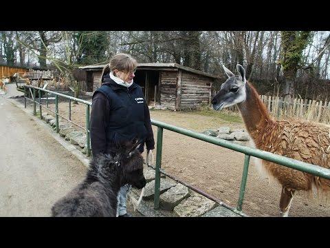 Ein Tag im Greifswalder Tierpark I Reportage