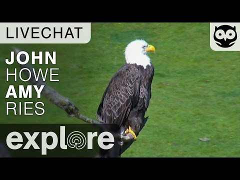 John Howe Amy Ries - Raptor Resource Project - Live Chat