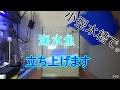 小型水槽で海水魚を立ち上げます〜立ち上げ編〜 の動画、YouTube動画。