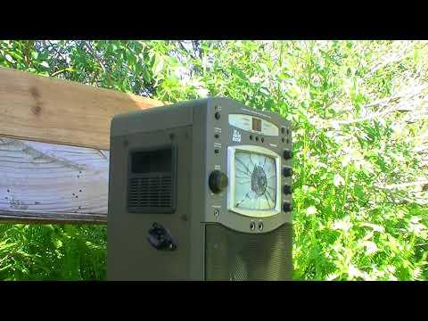 Umarex Gauntlet .22 vs Karaoke Machine