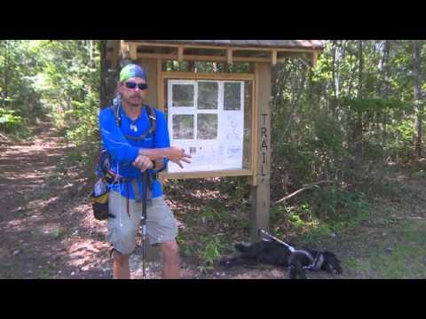 blind hiker