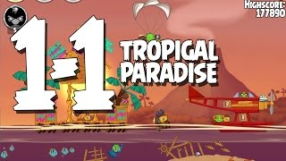 Angry Birds Seasons Tropigal Paradise 1-1 Walkthrough 3 Star